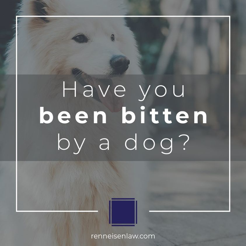 Read more about the article Have you been bitten by a dog?